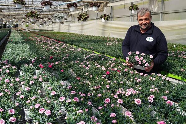 Más de 3.000.000 de plantas al año